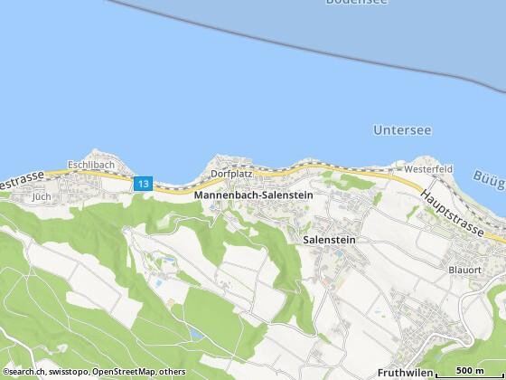 Mannenbach-Salenstein