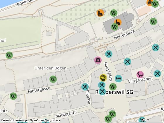 Karte: Naturheilpraxis Murer, Rapperswil, Neue Jonastr. 38