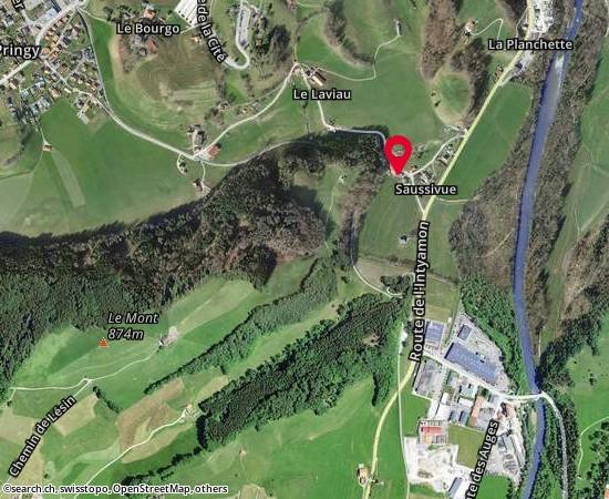 1663 gruyeres Route de Saussivue 94