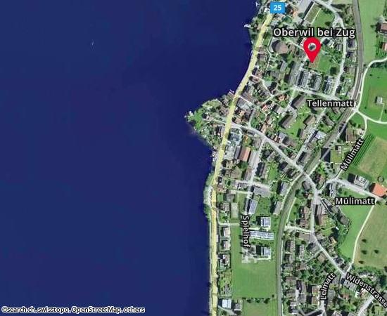 6317 Oberwil Brunnenmattstrasse 9