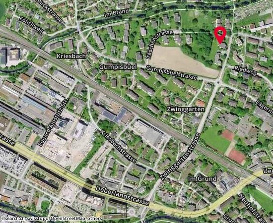 8600 Zwinggartenstrasse 51