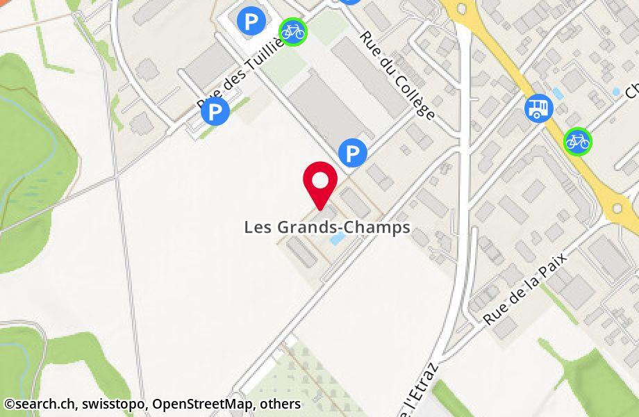 chemin des Grands-Champs 6,1196 Gland