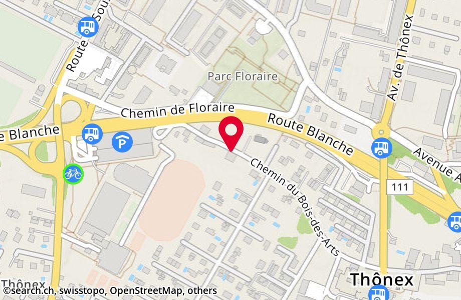 chemin du Bois-des-Arts 38,1226 Thônex
