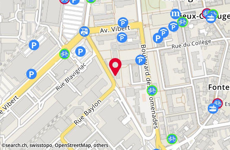 rue Jacques-Grosselin 25,1227 Carouge
