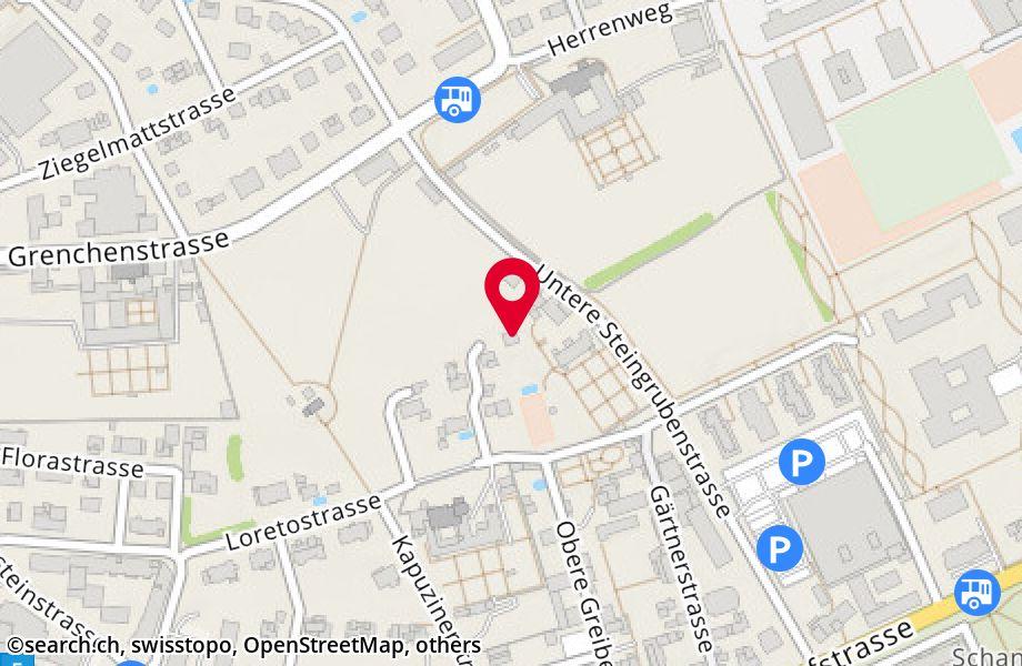 Von-Vigier-Weg 6,4500 Solothurn