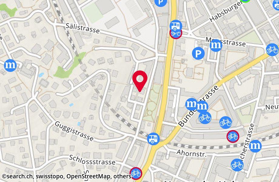 Taubenhausstrasse 8,6005 Luzern