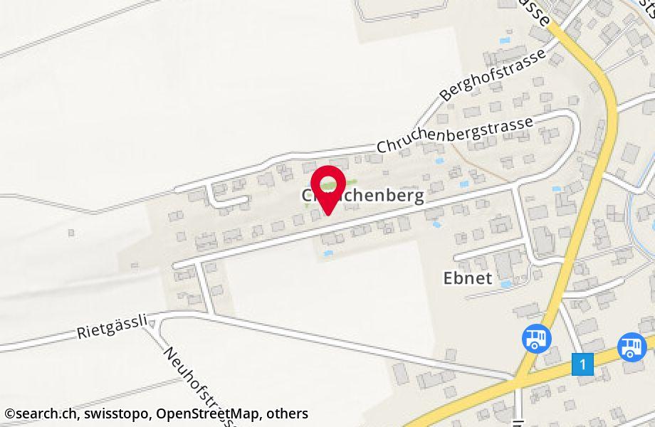 Unterer Chruchenberg 16,8505 Pfyn