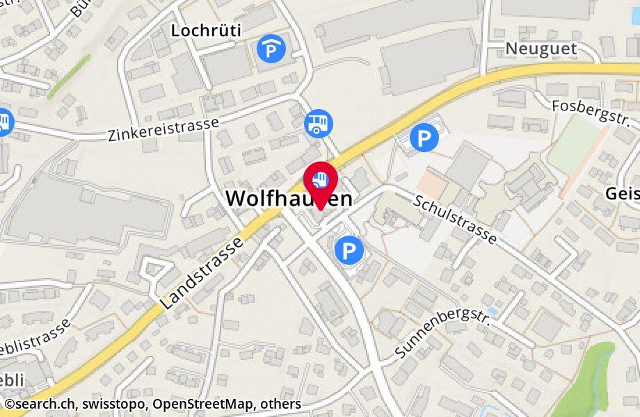 Schulstrasse 1,8633 Wolfhausen