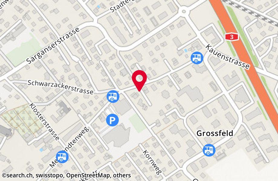 Schwarzackerstrasse 42,8887 Mels