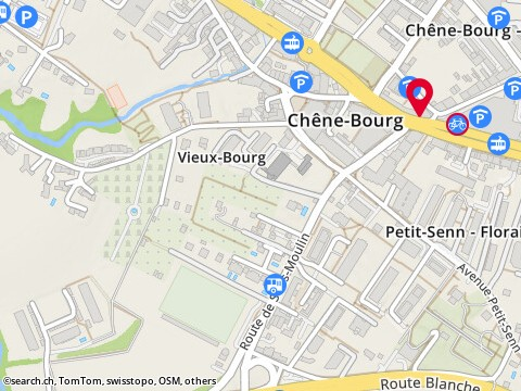 Rue de Genève 23, 1225 Chêne-Bourg