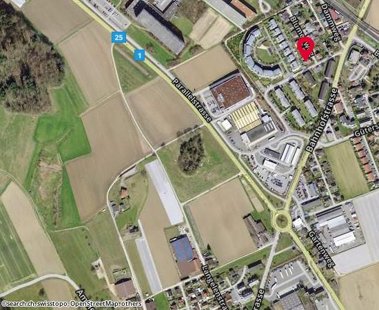 5605 Dottikon Blumenweg 1