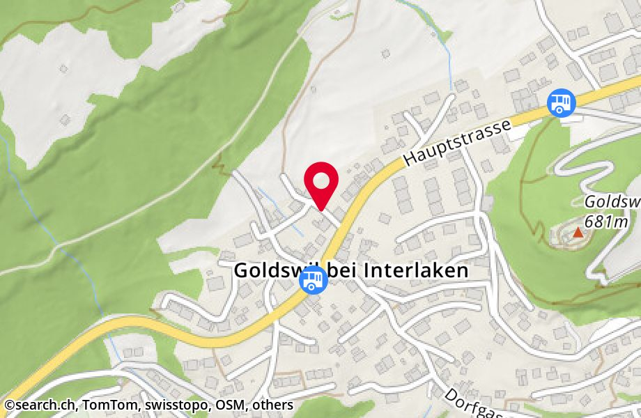 Hobachergasse,3805 Goldswil b. Interlaken