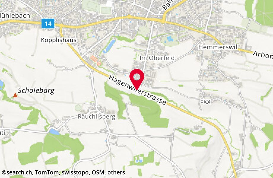 Hagenwilerstrasse 39,8580 Amriswil