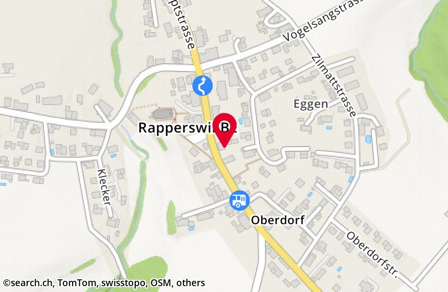 Hauptstrasse 49,3255 Rapperswil