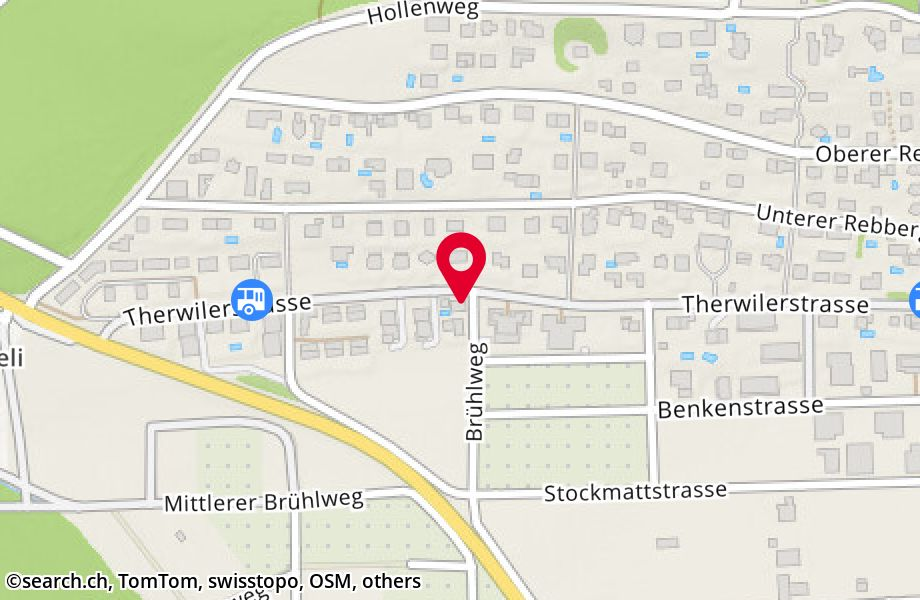 Therwilerstrasse 55,4153 Reinach