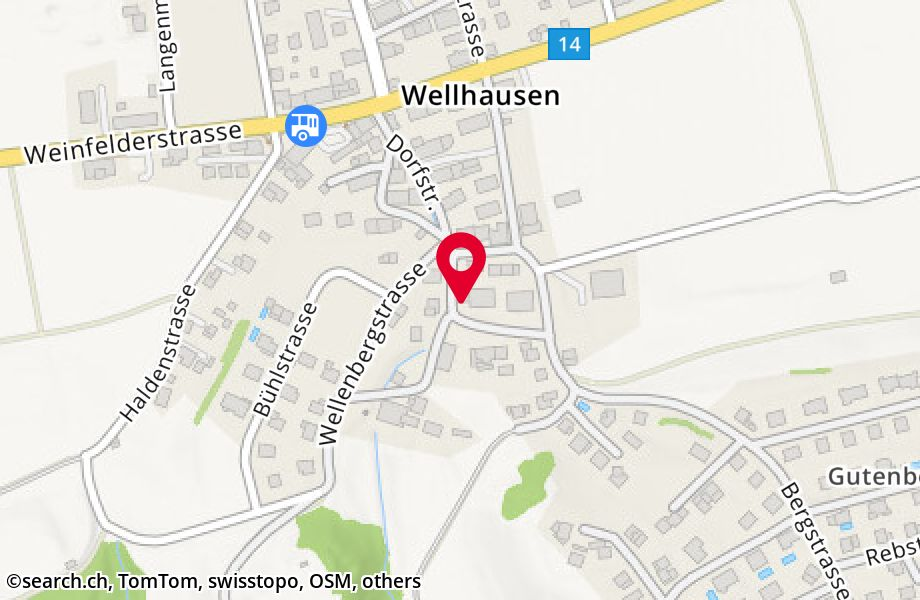 Ringstrasse 8,8552 Felben-Wellhausen