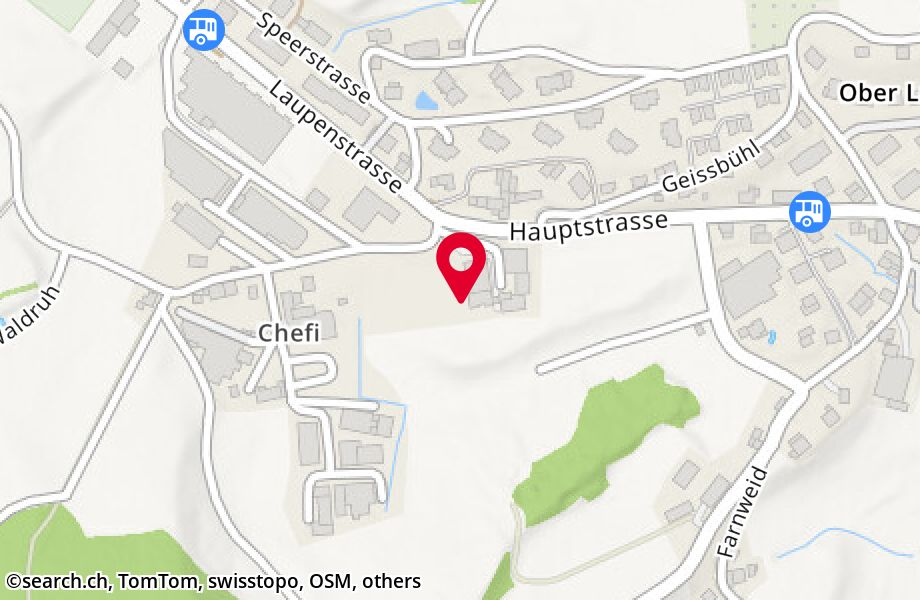 Chefistrasse 68,8637 Laupen