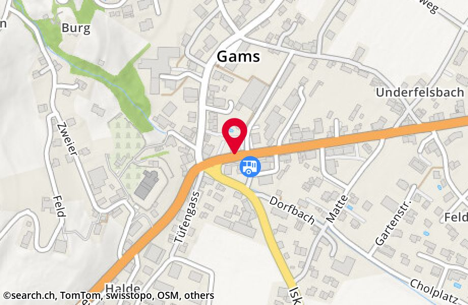 Haagerstrasse 1,9473 Gams