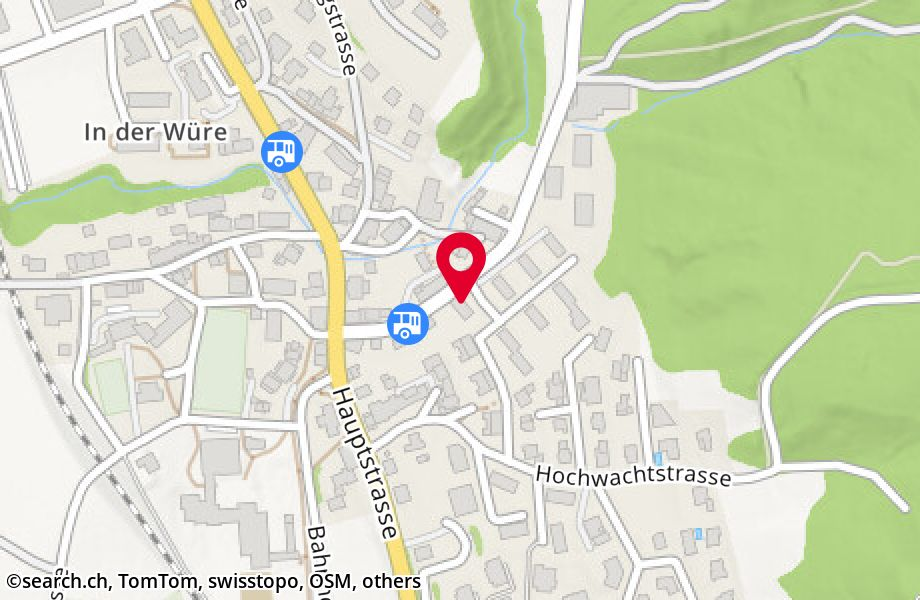 Maugwilerstrasse 12,9552 Bronschhofen