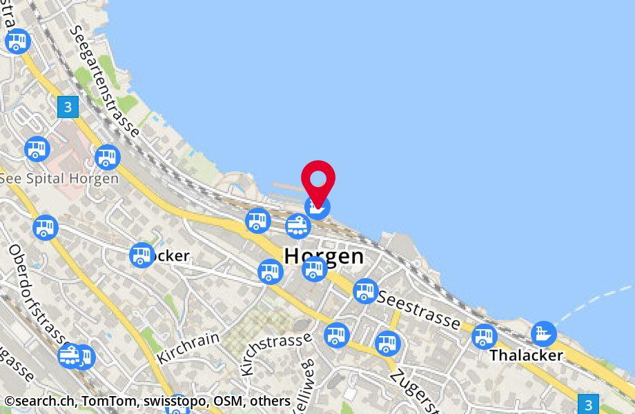 Horgen (See)
