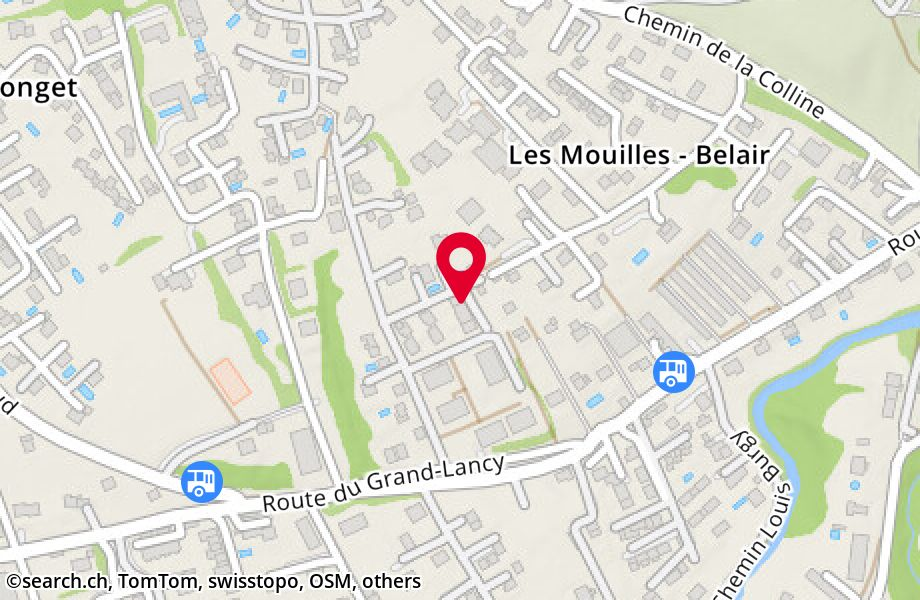 Chemin de Pierre-Longue 8B, 1212 Grand-Lancy