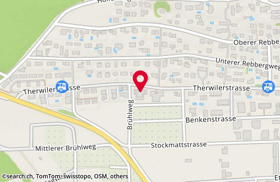 Therwilerstrasse 49, 4153 Reinach