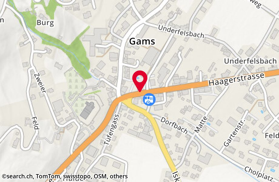 Haagerstrasse 1, 9473 Gams