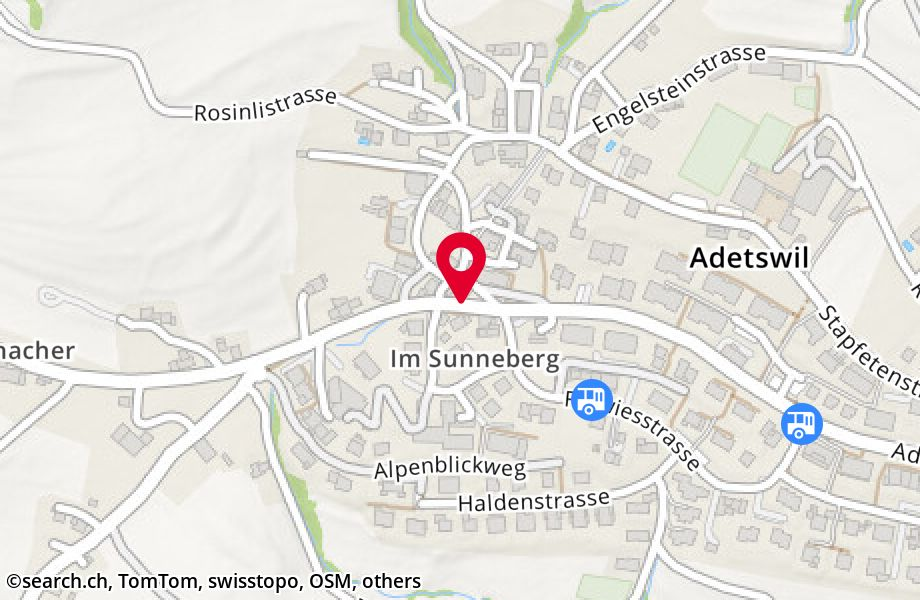 Adetswilerstrasse 42, 8345 Adetswil