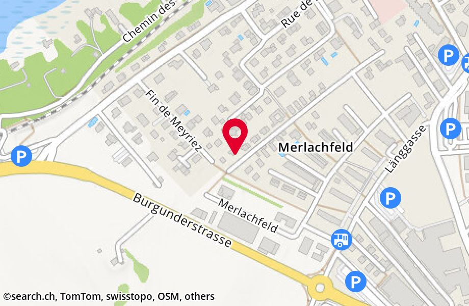 Satellite map of Murten : Google™ — share any place ...