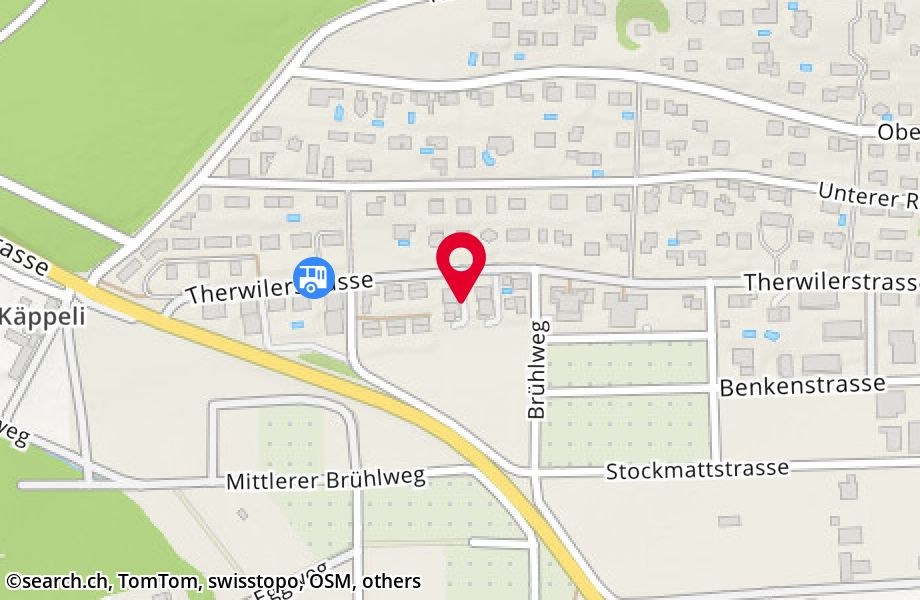 Therwilerstrasse 59, 4153 Reinach